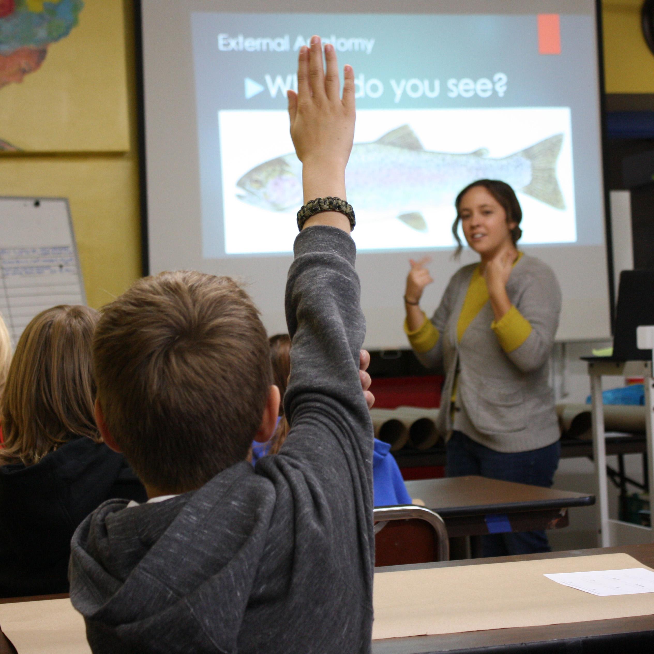 Education-HandRaised-square